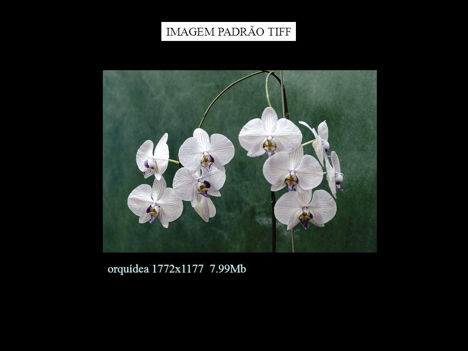 Imagem JPG impressão com pixelização IMAGEM PADRÃO JPG impressa
