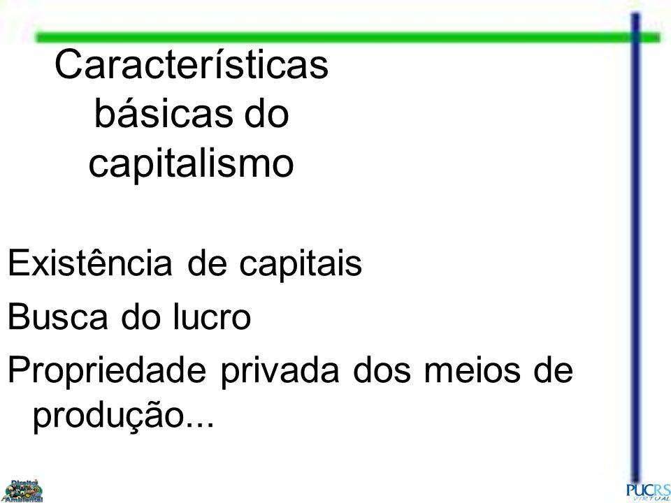 Características básicas do capitalismo Existência de capitais Busca do lucro Propriedade privada dos meios de produção...