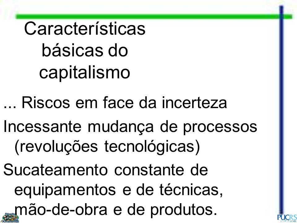 Características básicas do capitalismo... Riscos em face da incerteza Incessante mudança de processos (revoluções tecnológicas) Sucateamento constante