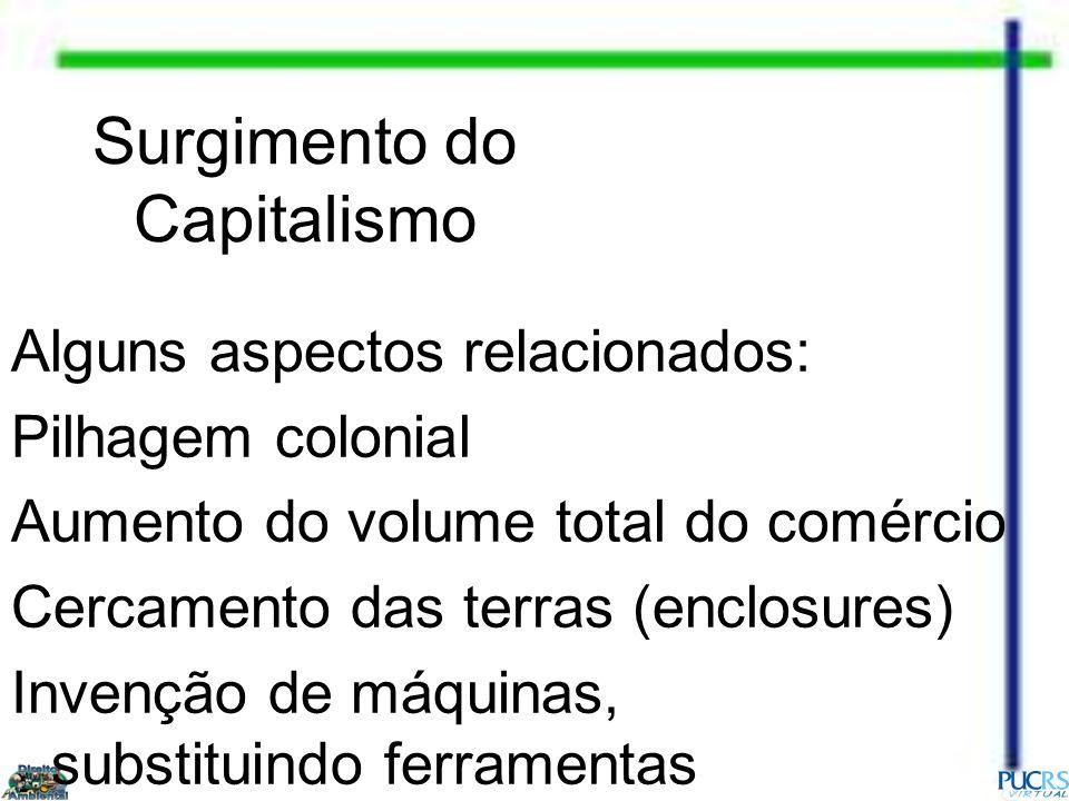Surgimento do Capitalismo Alguns aspectos relacionados: Pilhagem colonial Aumento do volume total do comércio Cercamento das terras (enclosures) Inven