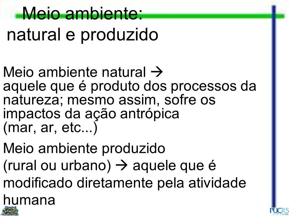 Meio ambiente: natural e produzido Meio ambiente natural aquele que é produto dos processos da natureza; mesmo assim, sofre os impactos da ação antróp