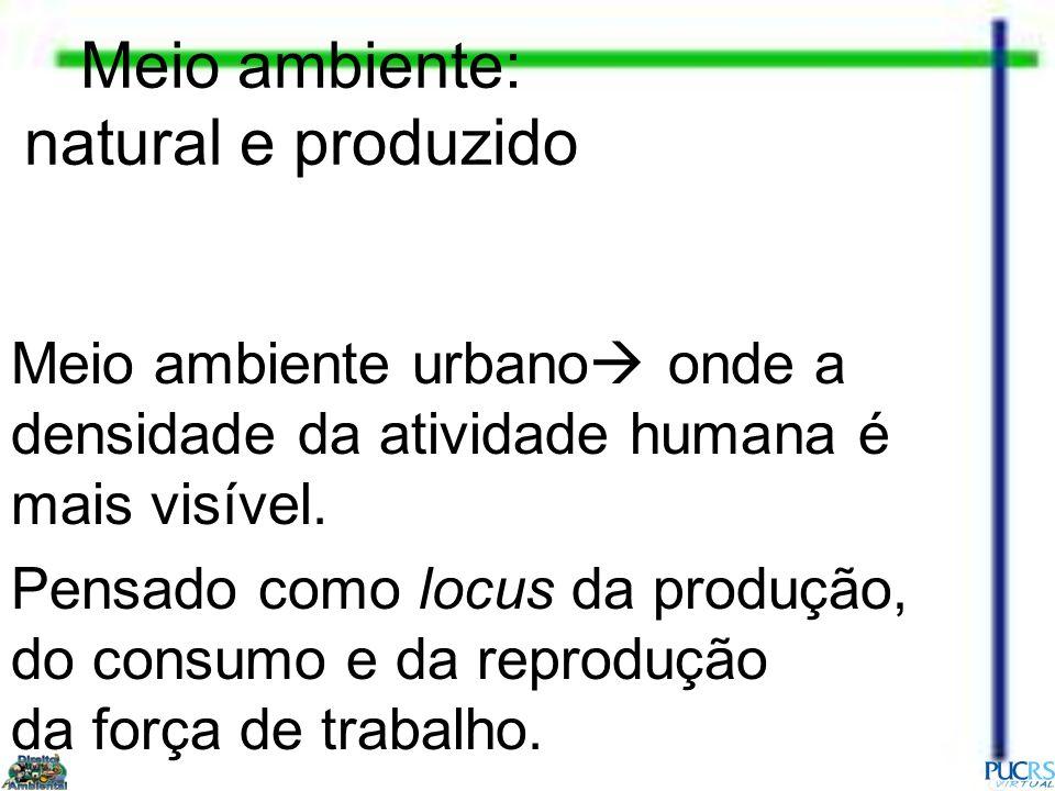 Meio ambiente: natural e produzido Meio ambiente urbano onde a densidade da atividade humana é mais visível. Pensado como locus da produção, do consum