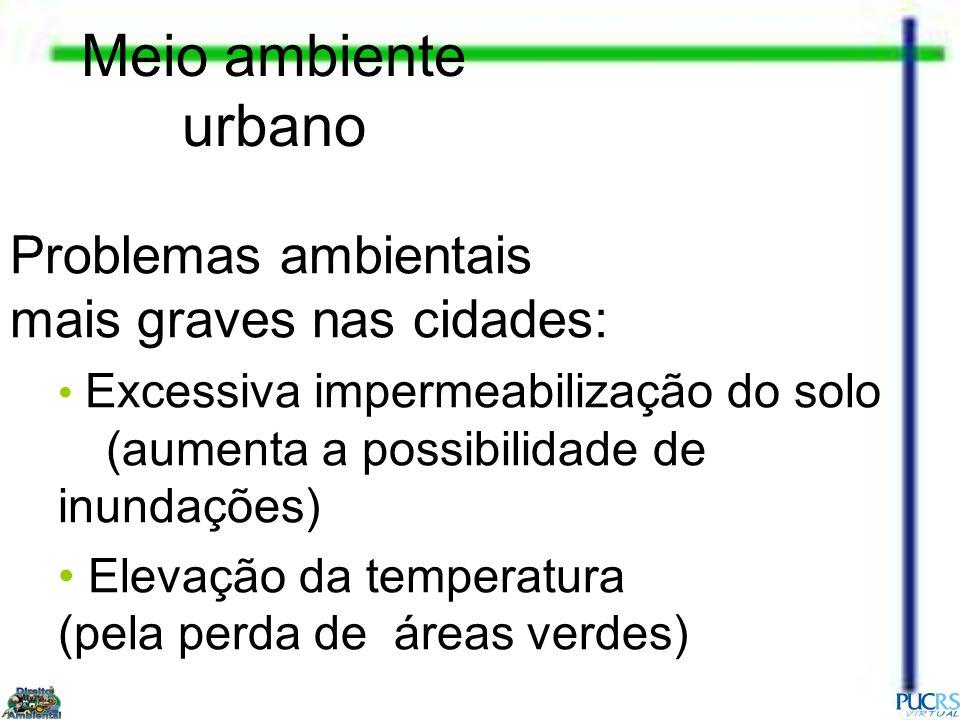 Meio ambiente urbano Problemas ambientais mais graves nas cidades: Excessiva impermeabilização do solo (aumenta a possibilidade de inundações) Elevaçã