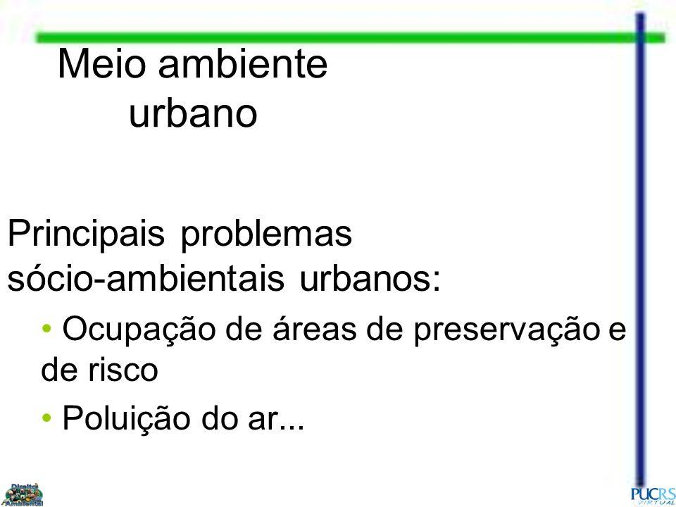 Meio ambiente urbano Principais problemas sócio-ambientais urbanos: Ocupação de áreas de preservação e de risco Poluição do ar...