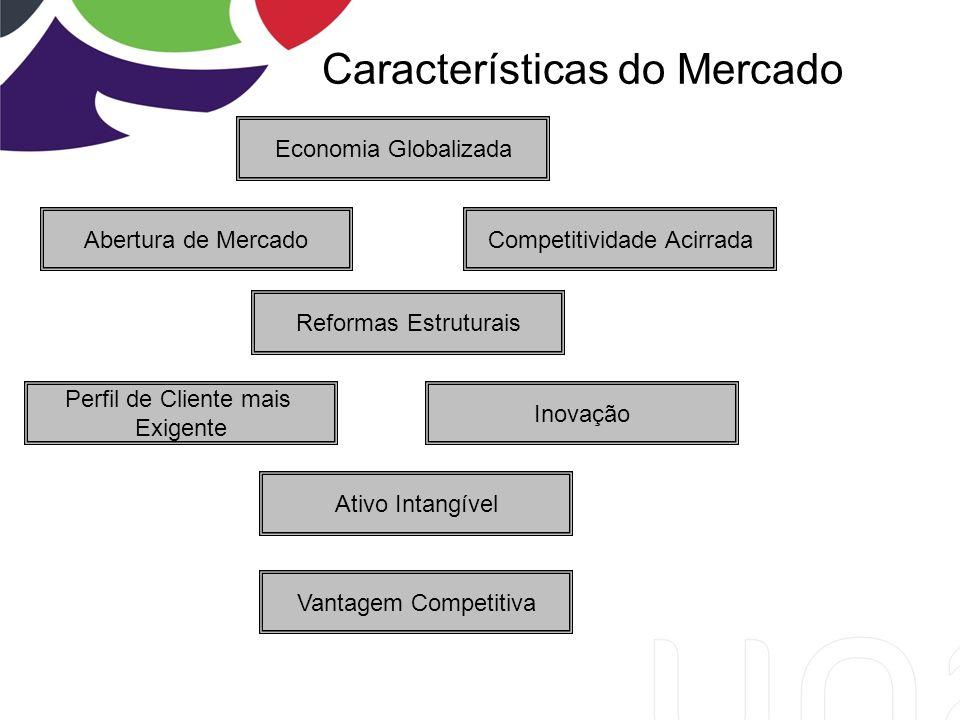 Características do Mercado Economia Globalizada Competitividade Acirrada Ativo Intangível Abertura de Mercado Reformas Estruturais Perfil de Cliente mais Exigente Inovação Vantagem Competitiva