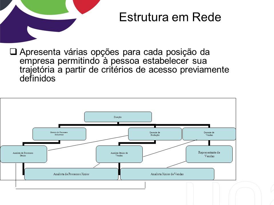 Estrutura em Rede Apresenta várias opções para cada posição da empresa permitindo à pessoa estabelecer sua trajetória a partir de critérios de acesso previamente definidos Direção Gerente de Processos Industriais Analista de Processos Sênior Analista de Processos Júnior Gerente de Produção Analista Sênior de Vendas Analista Júnior de Vendas Gerente de Vendas Representante de Vendas