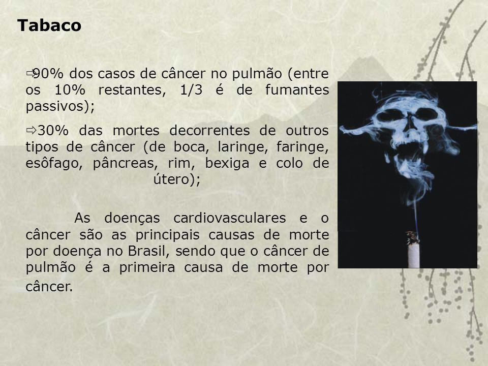 Tabaco 90% dos casos de câncer no pulmão (entre os 10% restantes, 1/3 é de fumantes passivos); 30% das mortes decorrentes de outros tipos de câncer (de boca, laringe, faringe, esôfago, pâncreas, rim, bexiga e colo de útero); As doenças cardiovasculares e o câncer são as principais causas de morte por doença no Brasil, sendo que o câncer de pulmão é a primeira causa de morte por câncer.