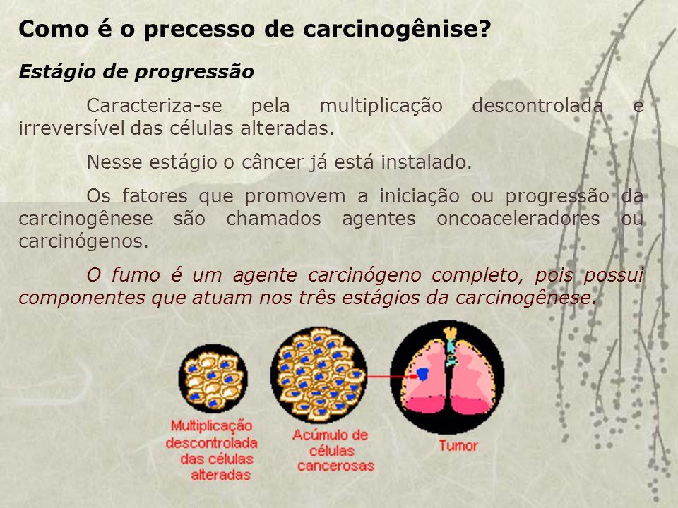 Como é o precesso de carcinogênise.