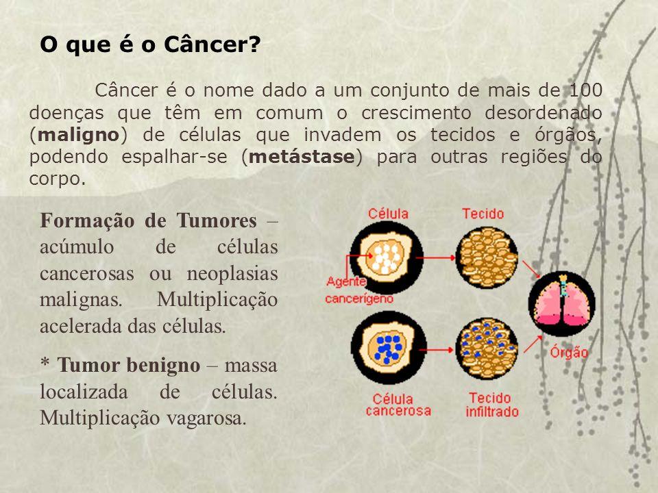 O que causa o câncer.Causas Externas – meio ambiente, hábitos ou costumes.