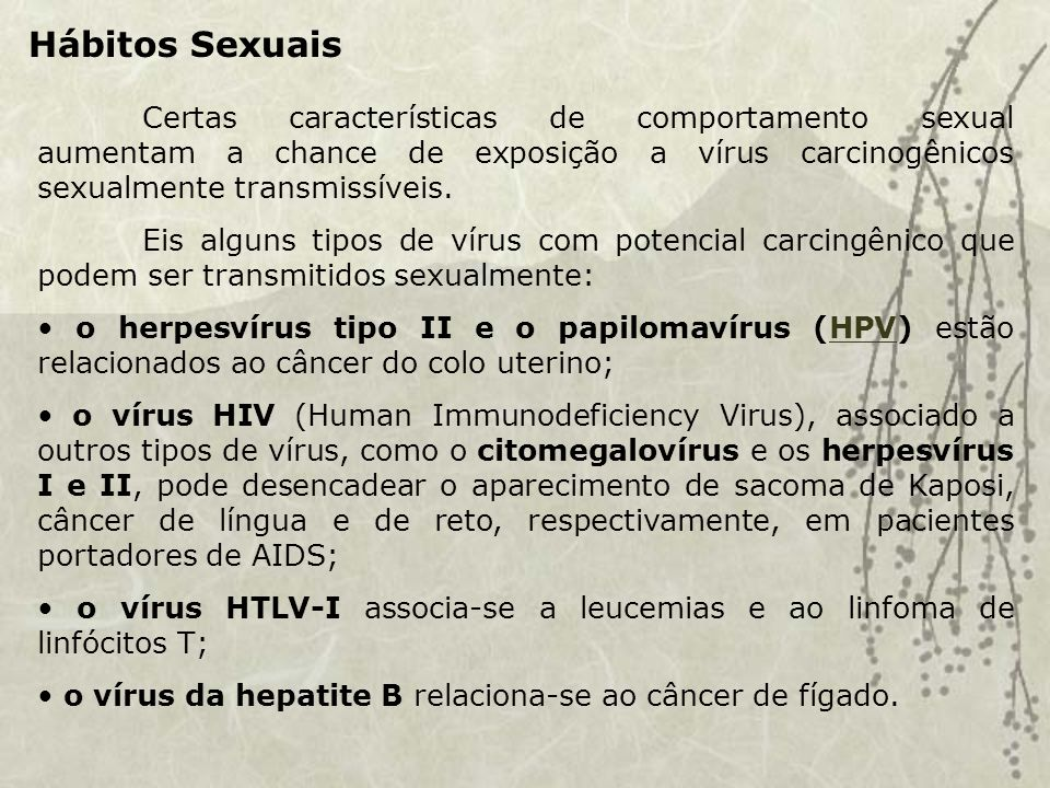 Hábitos Sexuais Certas características de comportamento sexual aumentam a chance de exposição a vírus carcinogênicos sexualmente transmissíveis.