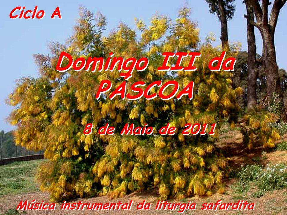 Ciclo A Domingo III da PÁSCOA Domingo III da PÁSCOA 8 de Maio de 2011 Música instrumental da liturgia safardita