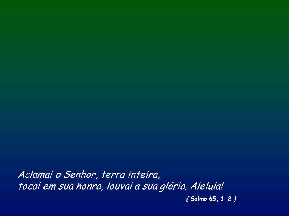 … / … Então Jesus disse-lhes: «Homens sem inteligência e lentos de espírito para acreditar em tudo o que os profetas anunciaram.