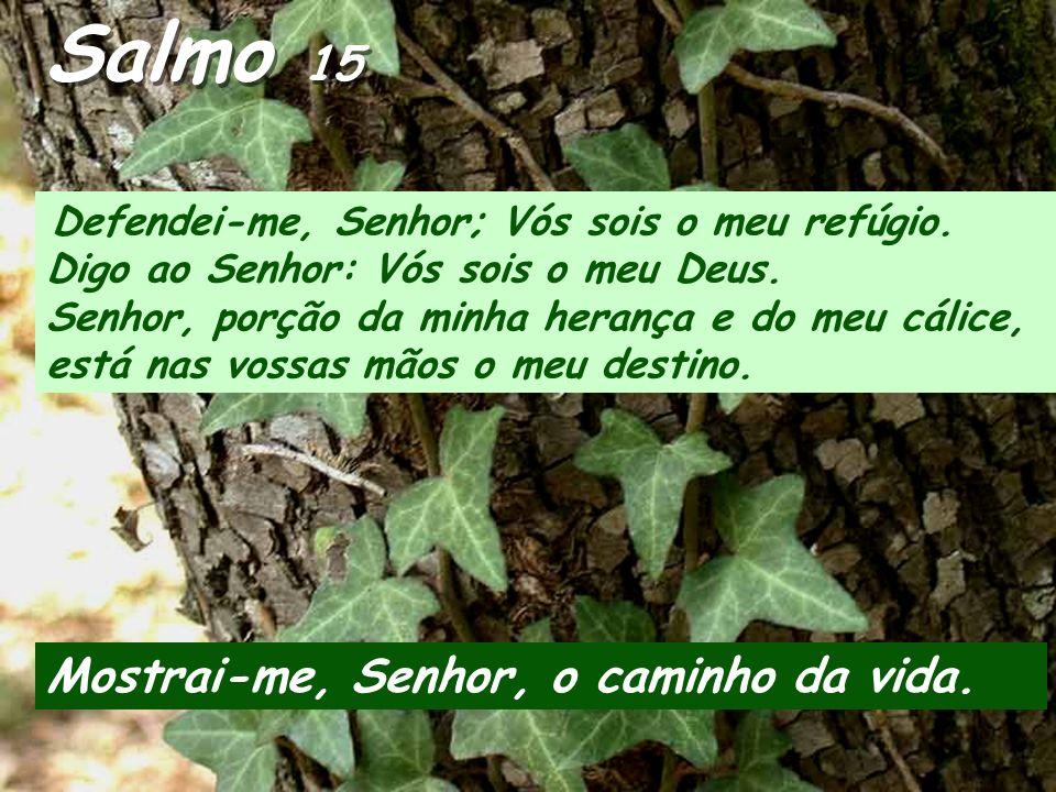 Salmo 15 Defendei-me, Senhor; Vós sois o meu refúgio.