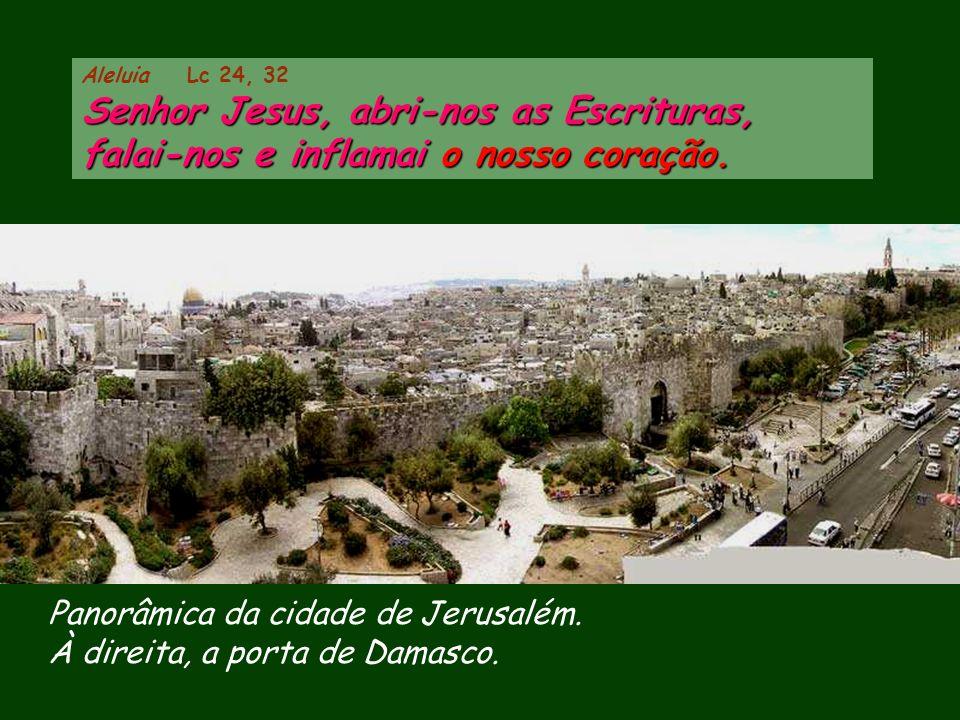 Panorâmica da cidade de Jerusalém.À direita, a porta de Damasco.