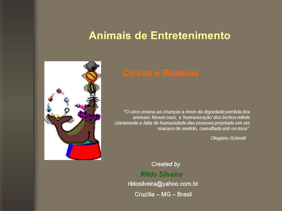 Animais de Entretenimento Circos e Rodeios O circo ensina as crianças a rirem da dignidade perdida dos animais.