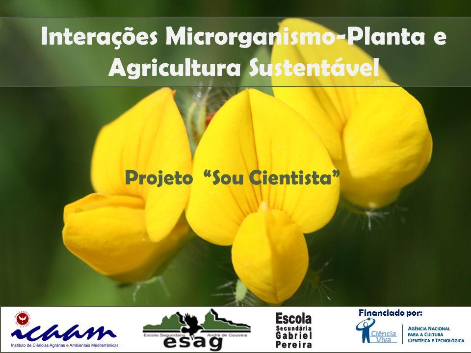 Interações Microrganismo-Planta e Agricultura Sustentável Financiado por: Projeto Sou Cientista