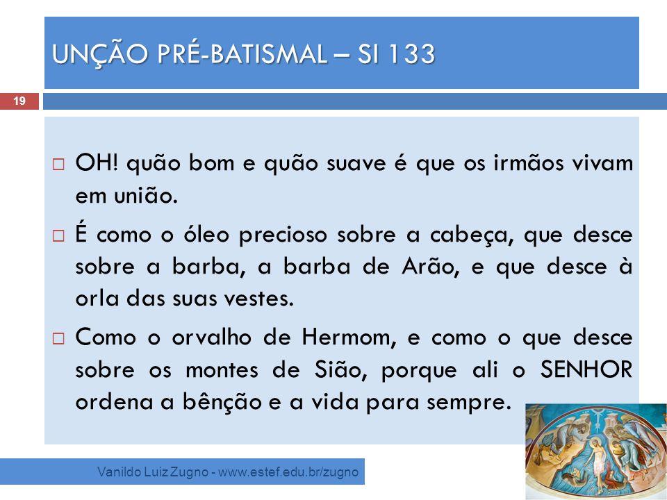 UNÇÃO PRÉ-BATISMAL – Sl 133 Vanildo Luiz Zugno - www.estef.edu.br/zugno OH! quão bom e quão suave é que os irmãos vivam em união. É como o óleo precio