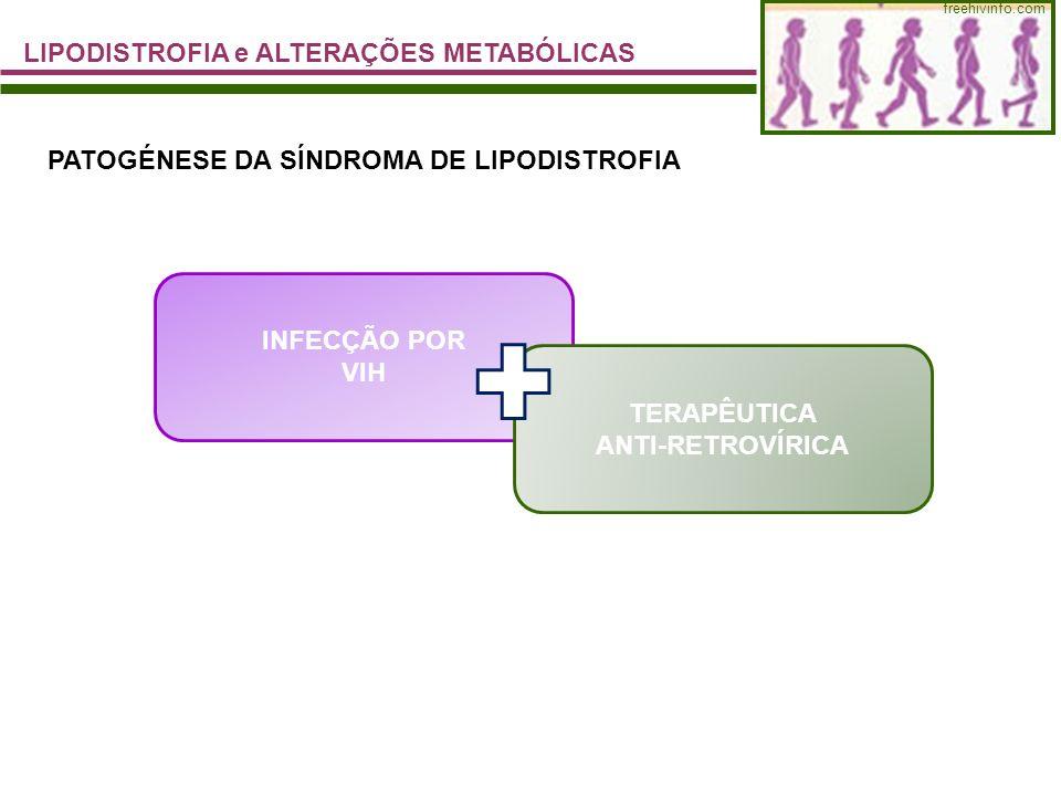 freehivinfo.com LIPODISTROFIA e ALTERAÇÕES METABÓLICAS PATOGÉNESE DA SÍNDROMA DE LIPODISTROFIA INFECÇÃO POR VIH TERAPÊUTICA ANTI-RETROVÍRICA