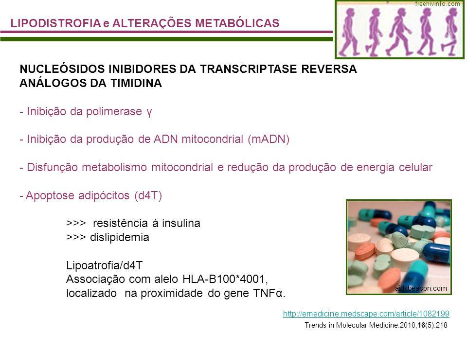 LIPODISTROFIA e ALTERAÇÕES METABÓLICAS freehivinfo.com aidsbeacon.com NUCLEÓSIDOS INIBIDORES DA TRANSCRIPTASE REVERSA ANÁLOGOS DA TIMIDINA - Inibição