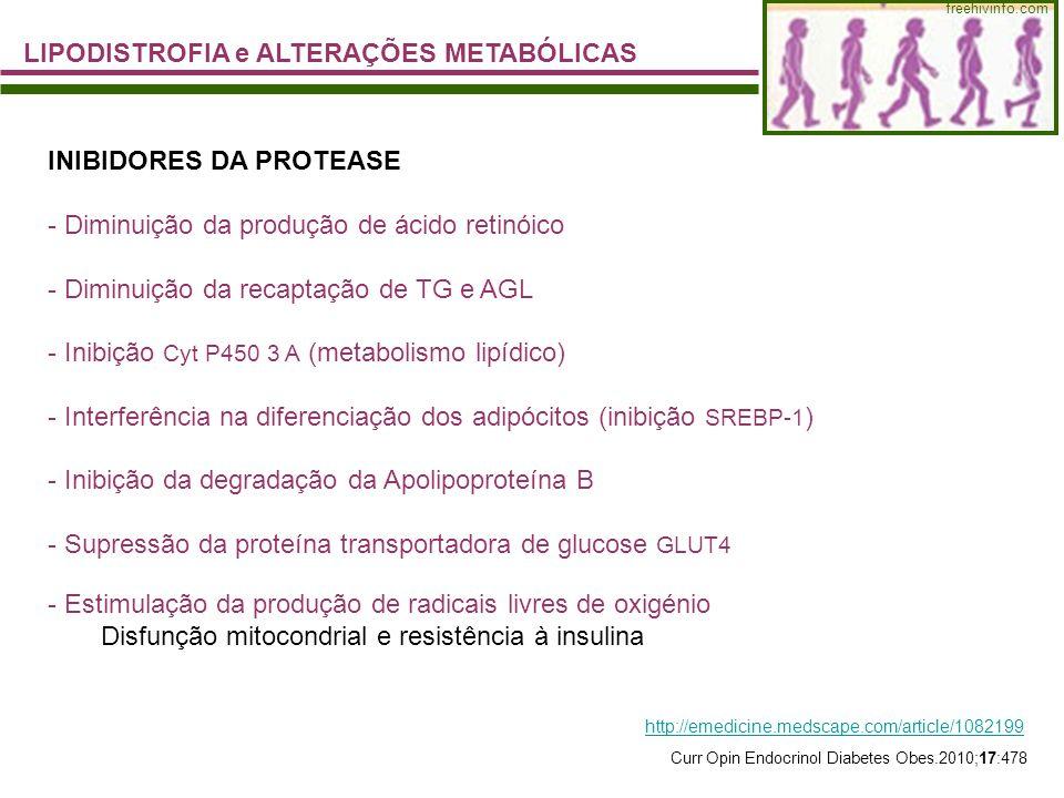LIPODISTROFIA e ALTERAÇÕES METABÓLICAS freehivinfo.com INIBIDORES DA PROTEASE - Diminuição da produção de ácido retinóico - Diminuição da recaptação d