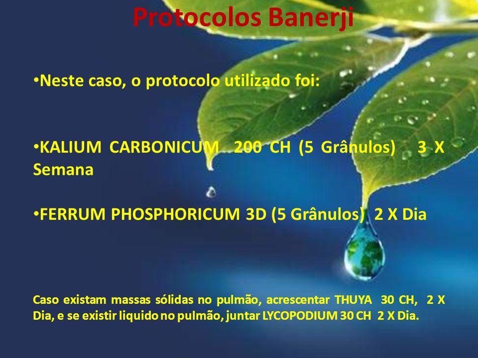 Protocolos Banerji Neste caso, o protocolo utilizado foi: KALIUM CARBONICUM 200 CH (5 Grânulos) 3 X Semana FERRUM PHOSPHORICUM 3D (5 Grânulos) 2 X Dia