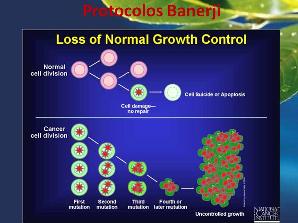 &29. Protocolos Banerji