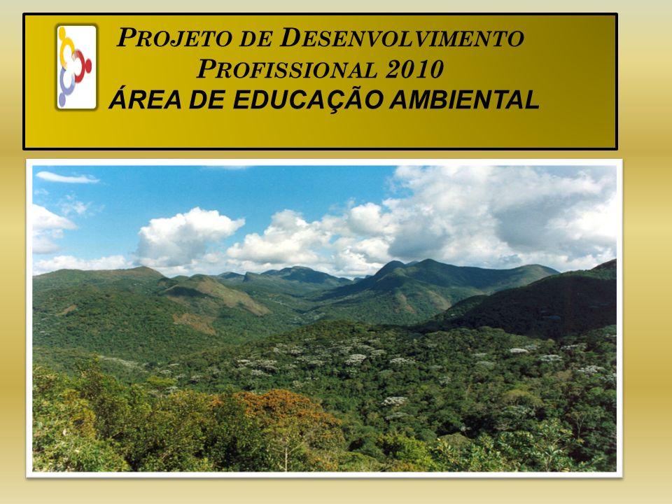 P ROJETO DE D ESENVOLVIMENTO P ROFISSIONAL 2010 ÁREA DE EDUCAÇÃO AMBIENTAL