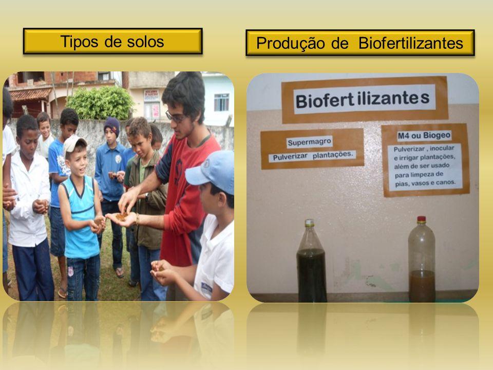 Produção de Biofertilizantes Tipos de solos