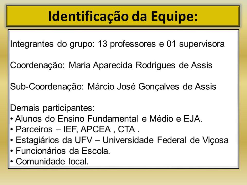 Identificação da Equipe: