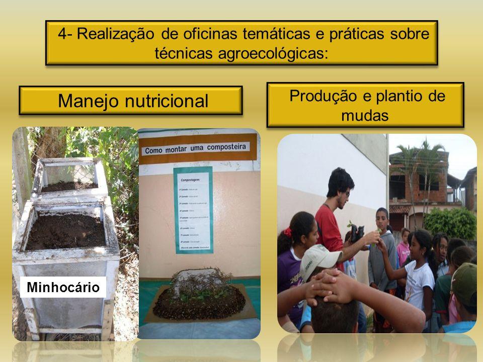 4- Realização de oficinas temáticas e práticas sobre técnicas agroecológicas: Manejo nutricional Produção e plantio de mudas Minhocário