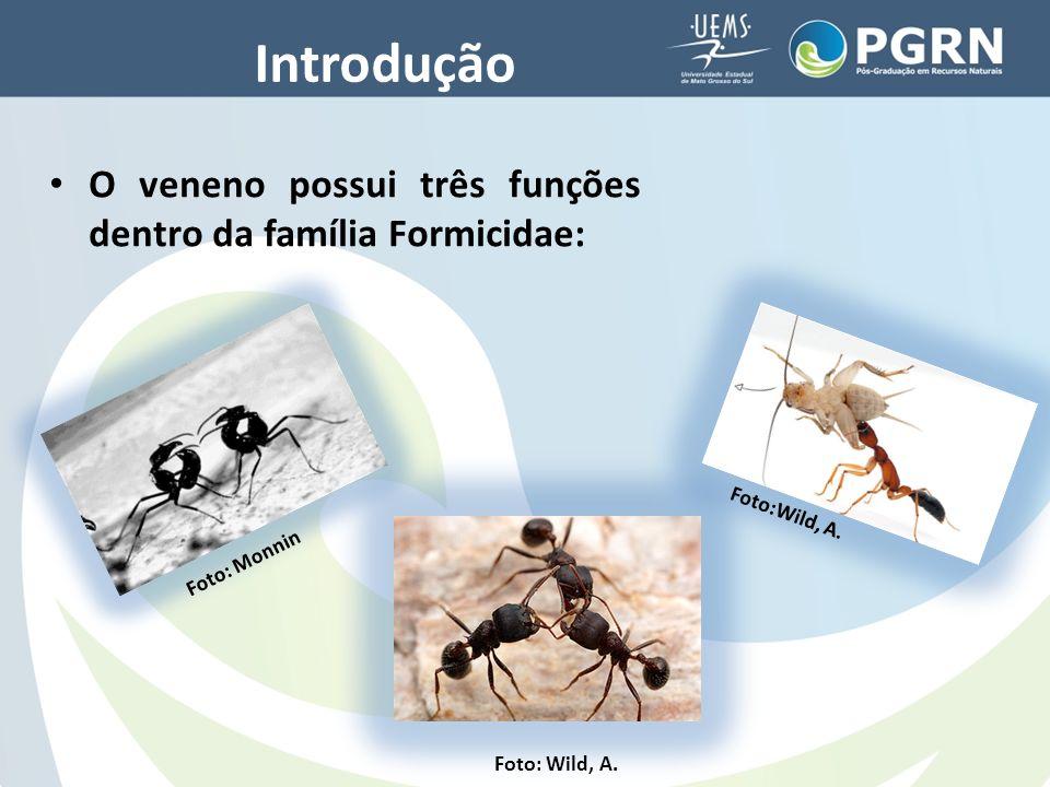 Considerações finais Pode-se se inferir que os fatores ambientais interferem de forma significativa na composição do veneno e do HC de formigas, e a dieta pode ser confirmada como parte decisiva para determinação dessas variações.