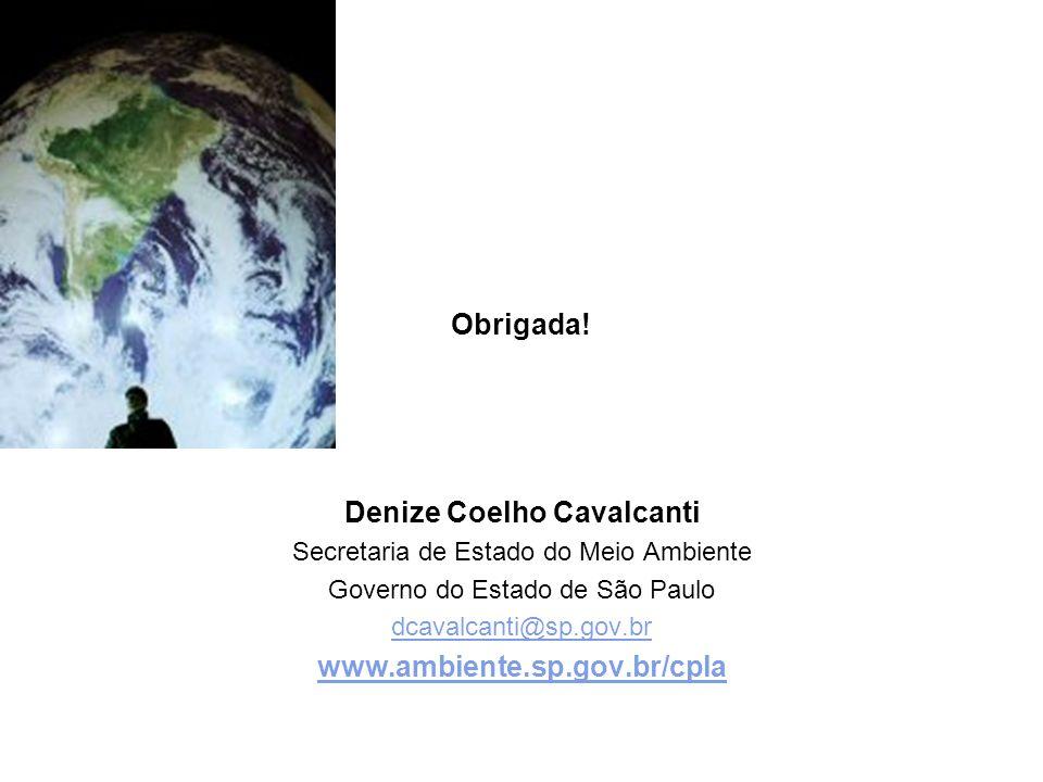 Denize Coelho Cavalcanti Secretaria de Estado do Meio Ambiente Governo do Estado de São Paulo dcavalcanti@sp.gov.br www.ambiente.sp.gov.br/cpla Obrigada!