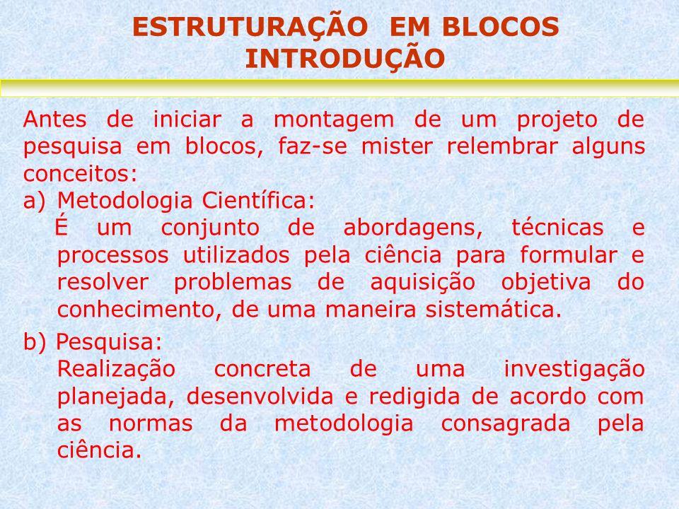 ESTRUTURAÇÃO EM BLOCOS INTRODUÇÃO Antes de iniciar a montagem de um projeto de pesquisa em blocos, faz-se mister relembrar alguns conceitos: a)Metodol