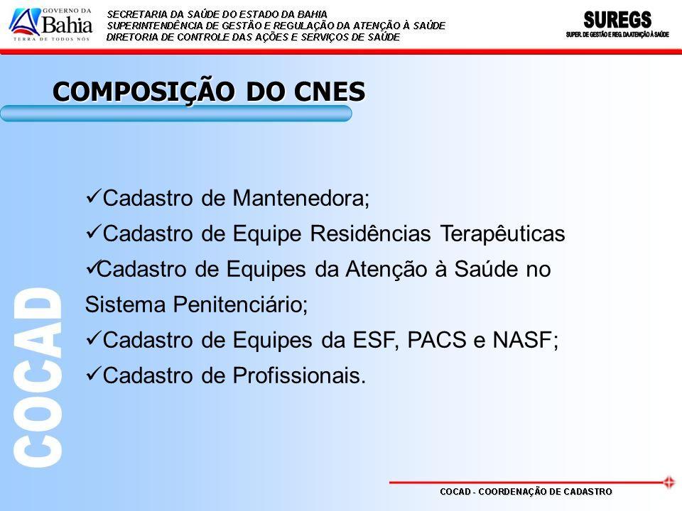 COMPOSIÇÃO DO CNES Cadastro de Mantenedora; Cadastro de Equipe Residências Terapêuticas Cadastro de Equipes da Atenção à Saúde no Sistema Penitenciário; Cadastro de Equipes da ESF, PACS e NASF; Cadastro de Profissionais.