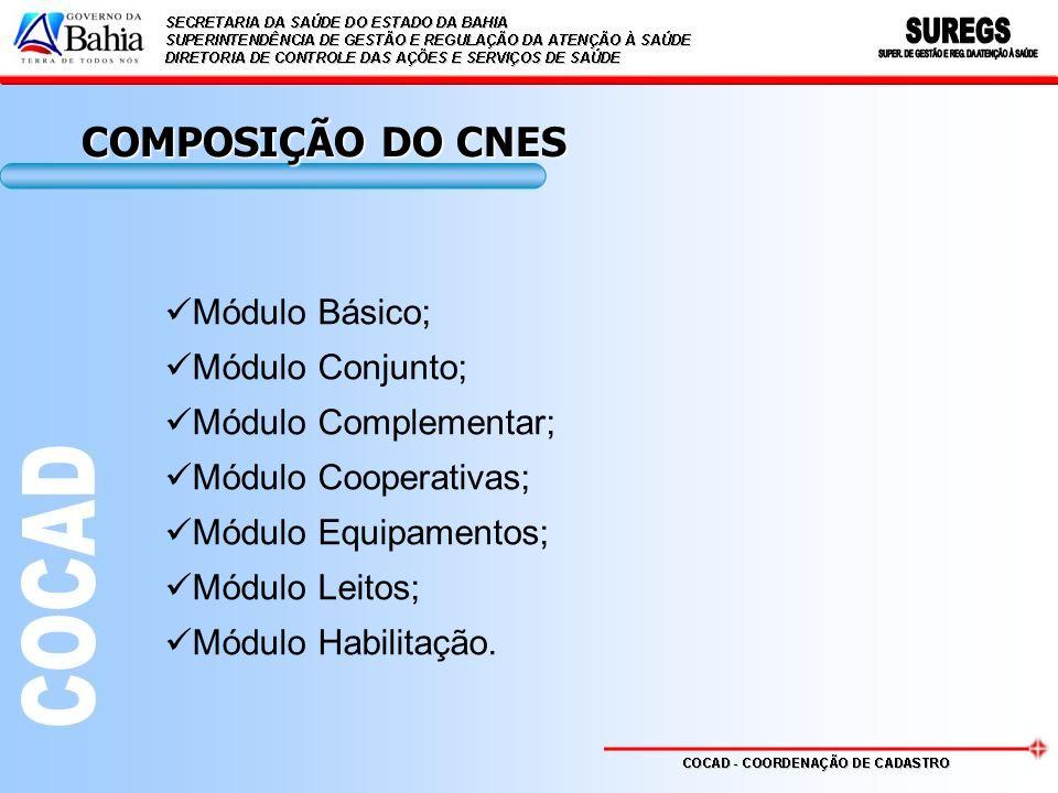 COMPOSIÇÃO DO CNES Módulo Básico; Módulo Conjunto; Módulo Complementar; Módulo Cooperativas; Módulo Equipamentos; Módulo Leitos; Módulo Habilitação.