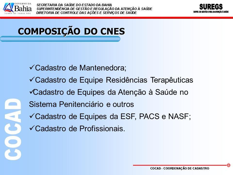 COMPOSIÇÃO DO CNES Cadastro de Mantenedora; Cadastro de Equipe Residências Terapêuticas Cadastro de Equipes da Atenção à Saúde no Sistema Penitenciário e outros Cadastro de Equipes da ESF, PACS e NASF; Cadastro de Profissionais.
