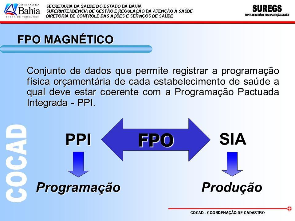FPO MAGNÉTICO Conjunto de dados que permite registrar a programação física orçamentária de cada estabelecimento de saúde a qual deve estar coerente co