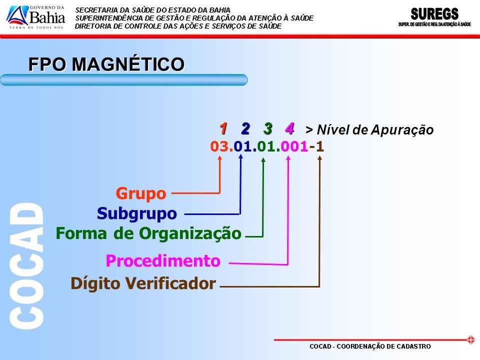 1 2 3 4 > Nível de Apuração 03.01.01.001-1 Grupo Subgrupo Forma de Organização Procedimento Dígito Verificador FPO MAGNÉTICO