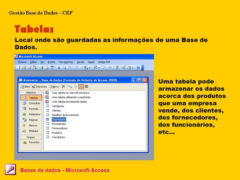Tabelas Bases de dados - Microsoft Access Local onde são guardadas as informações de uma Base de Dados. Uma tabela pode armazenar os dados acerca dos