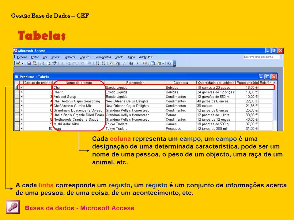 Tabelas Bases de dados - Microsoft Access A cada linha corresponde um registo, um registo é um conjunto de informações acerca de uma pessoa, de uma co