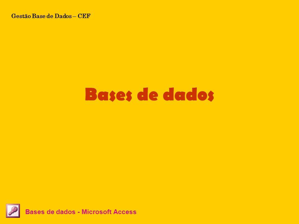 Tabelas Bases de dados - Microsoft Access A cada linha corresponde um registo, um registo é um conjunto de informações acerca de uma pessoa, de uma coisa, de um acontecimento, etc.
