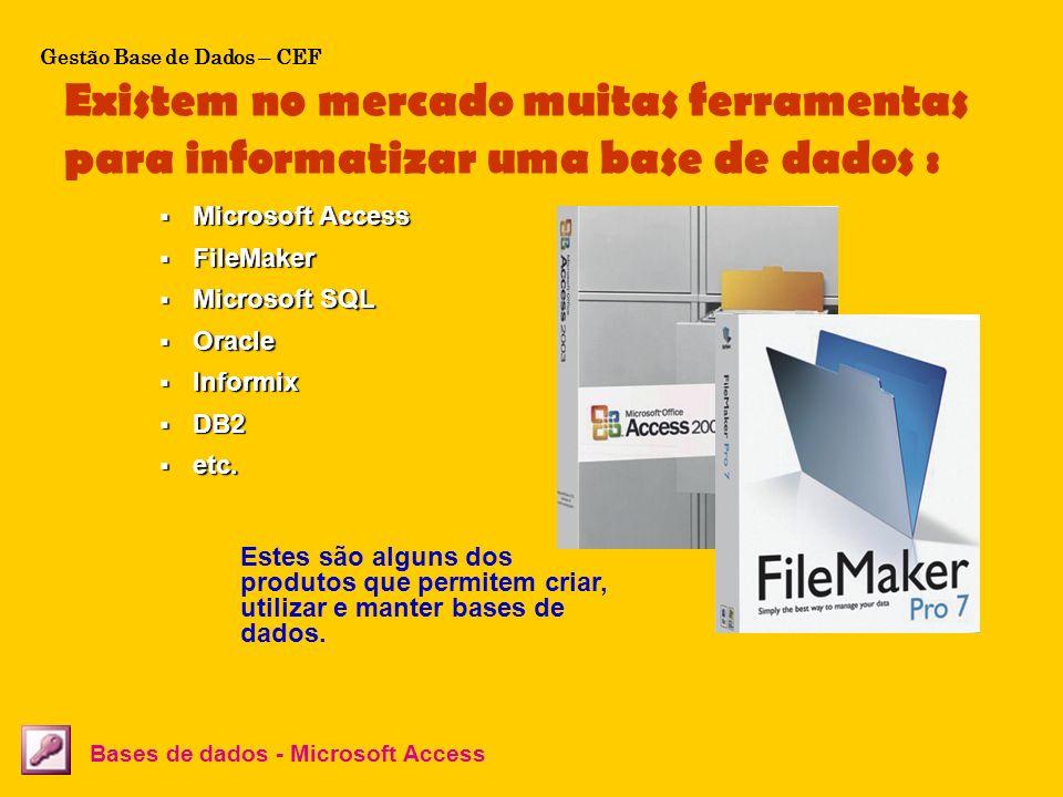 Existem no mercado muitas ferramentas para informatizar uma base de dados : Bases de dados - Microsoft Access Estes são alguns dos produtos que permit