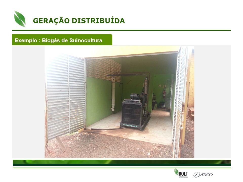 Exemplo : Biogás de Suinocultura GERAÇÃO DISTRIBUÍDA