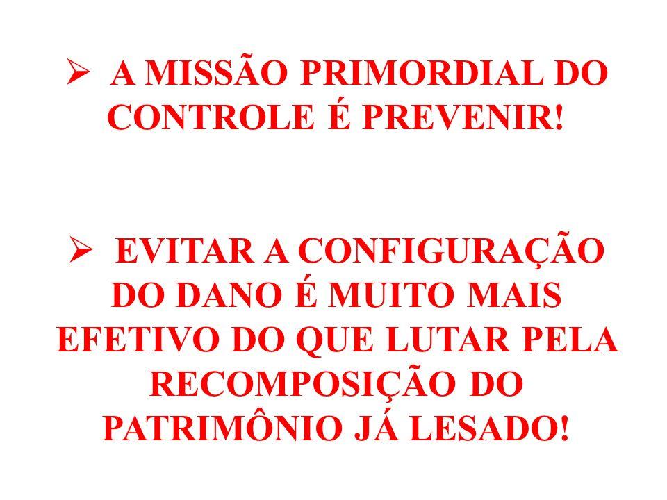 INSTRUMENTOS DE CONTROLE DO PODER LEGISLATIVO CONTROLE PARLAMENTAR INDIRETO: COMISSÃO MISTA DE PLANOS, ORÇAMENTOS PÚBLICOS E FISCALIZAÇÃO DO CONGRESSO NACIONAL (CMO) (art.