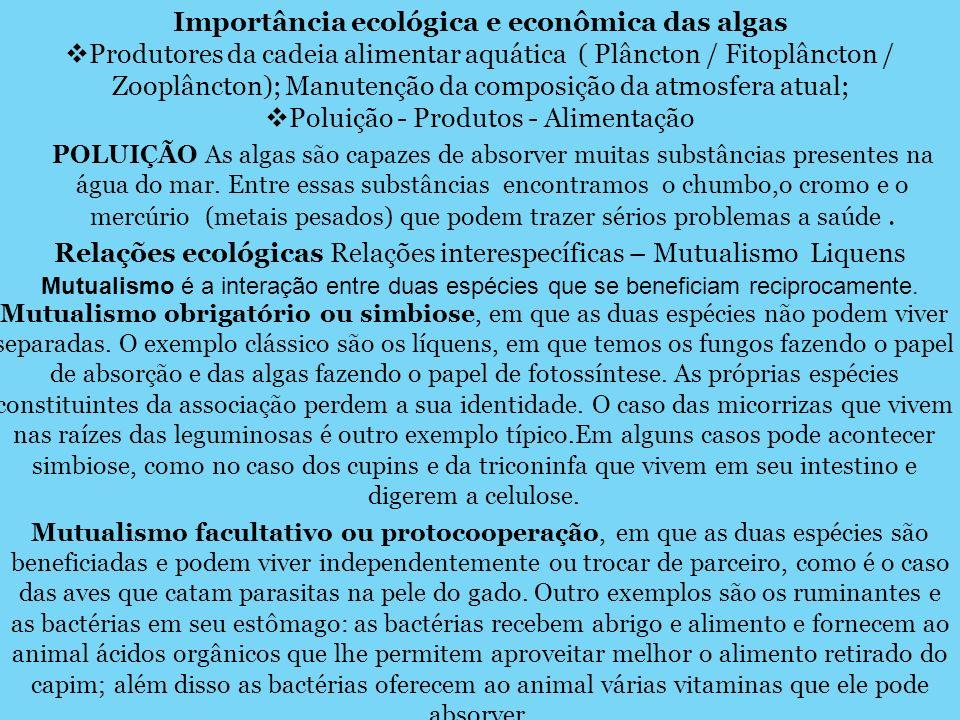 Importância ecológica e econômica das algas Produtores da cadeia alimentar aquática ( Plâncton / Fitoplâncton / Zooplâncton); Manutenção da composição