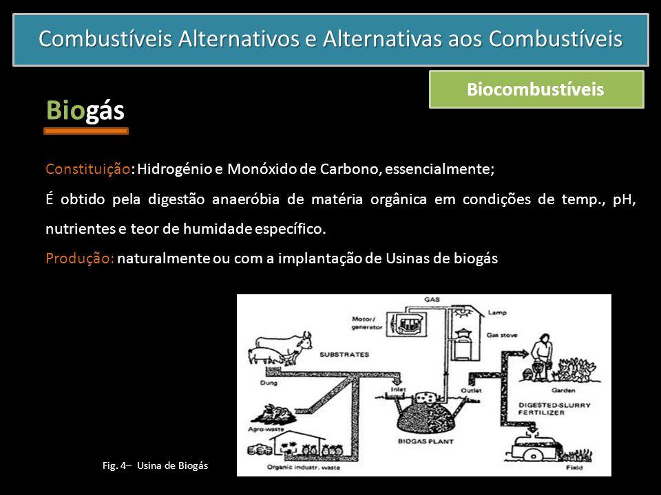 Combustíveis Alternativos e Alternativas aos Combustíveis Biocombustíveis Biogás Constituição: Hidrogénio e Monóxido de Carbono, essencialmente; É obt