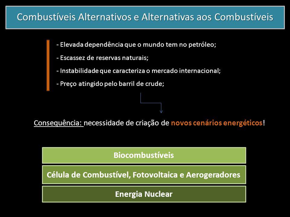 Combustíveis Alternativos e Alternativas aos Combustíveis - Elevada dependência que o mundo tem no petróleo; - Escassez de reservas naturais; - Instab