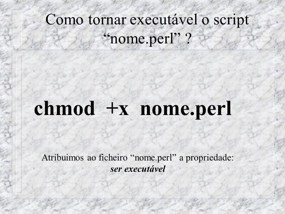 Como tornar executável o script nome.perl ? chmod +x nome.perl Atribuimos ao ficheiro nome.perl a propriedade: ser executável