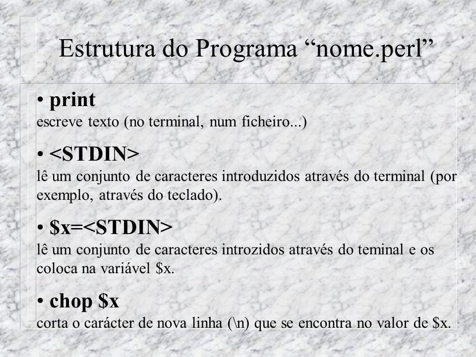 Estrutura do Programa nome.perl print escreve texto (no terminal, num ficheiro...) lê um conjunto de caracteres introduzidos através do terminal (por
