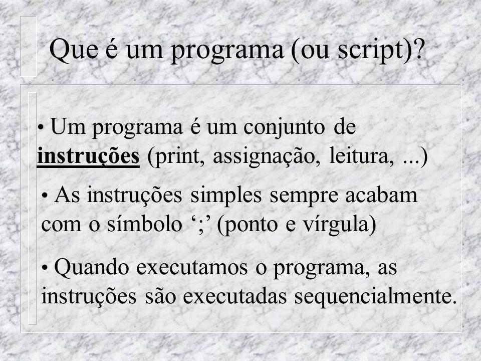 Que é um programa (ou script)? Um programa é um conjunto de instruções (print, assignação, leitura,...) As instruções simples sempre acabam com o símb